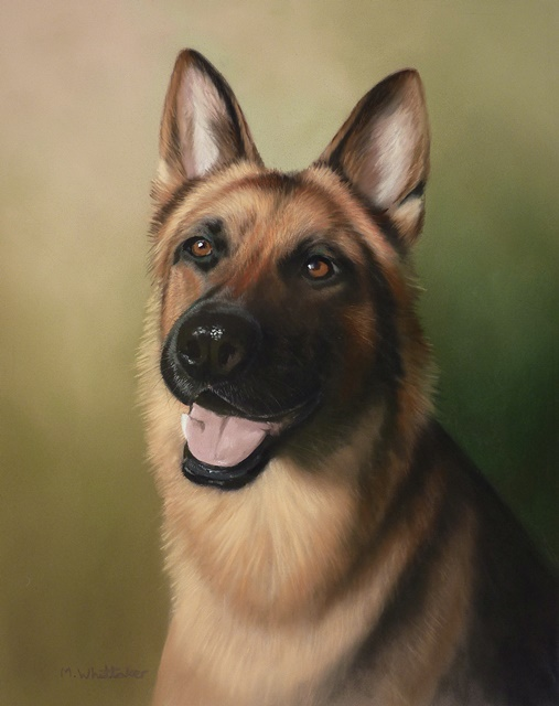 Original Pastel Painting Of German Shepherd, Trinity