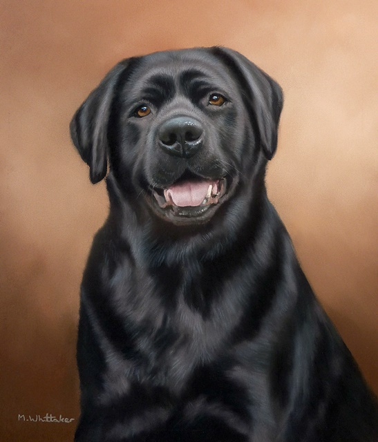 Original Pastel Painting Of Betsy The Black Labrador.
