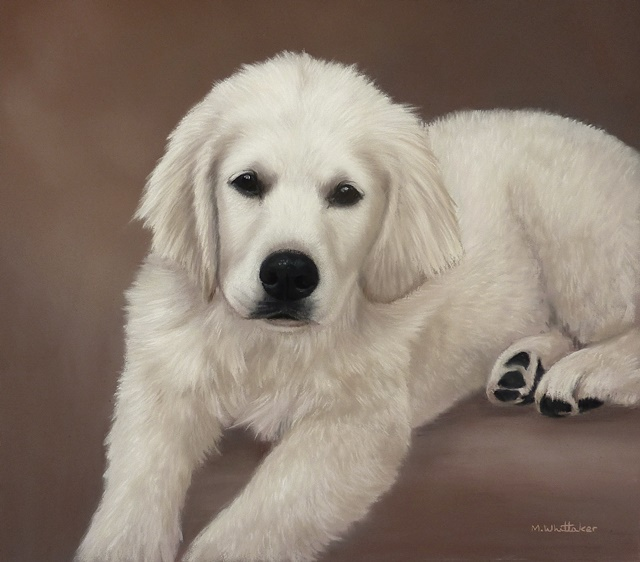 Original Pastel Painting Of Niamh