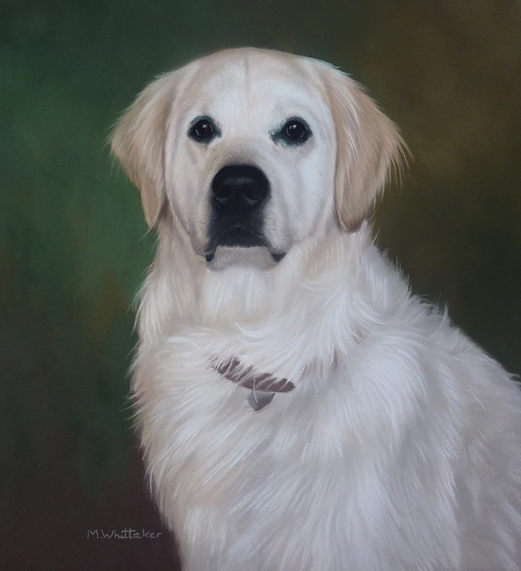 Original Pastel Painting Of Louie