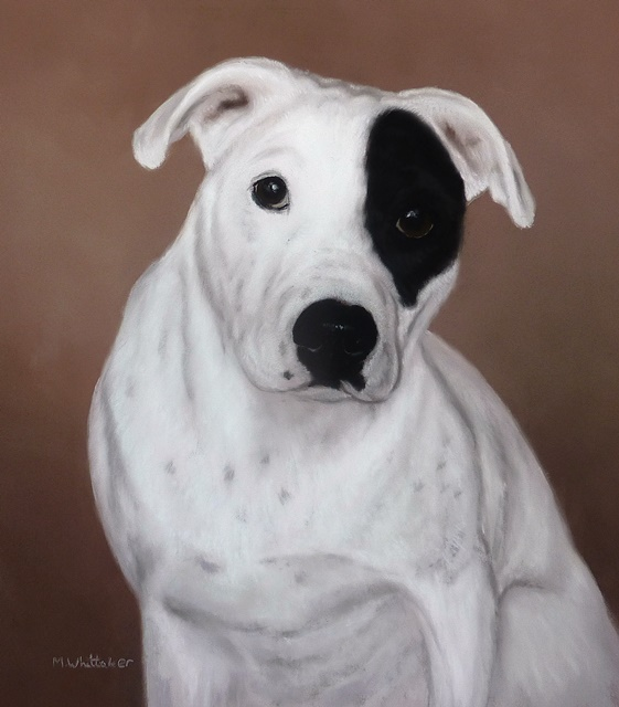 Original Pastel Painting Of Butch