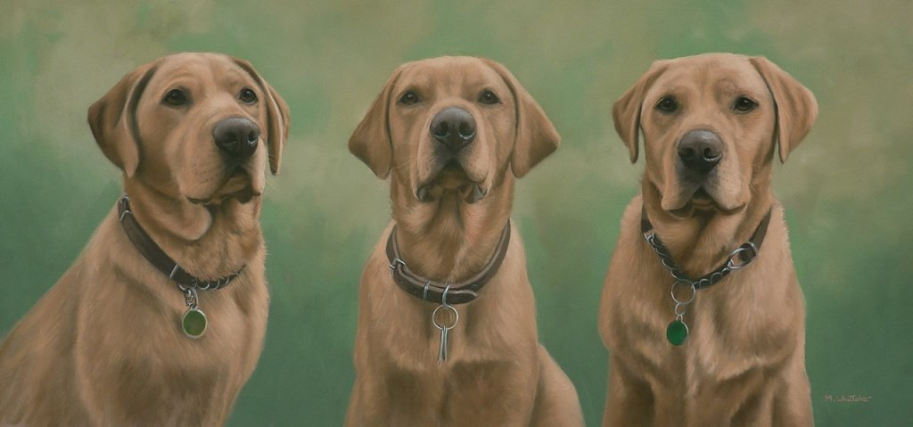 Original Pastel Painting of Fox Red Labradors, Bertie, Dylan & Ben.