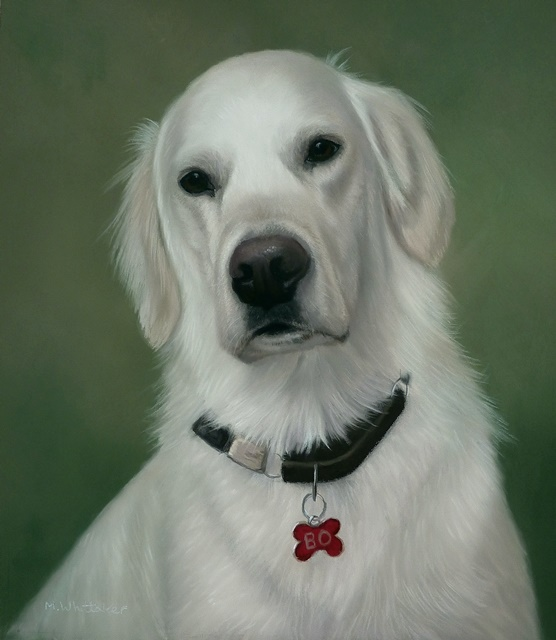 Original Pastel Painting Of Bo