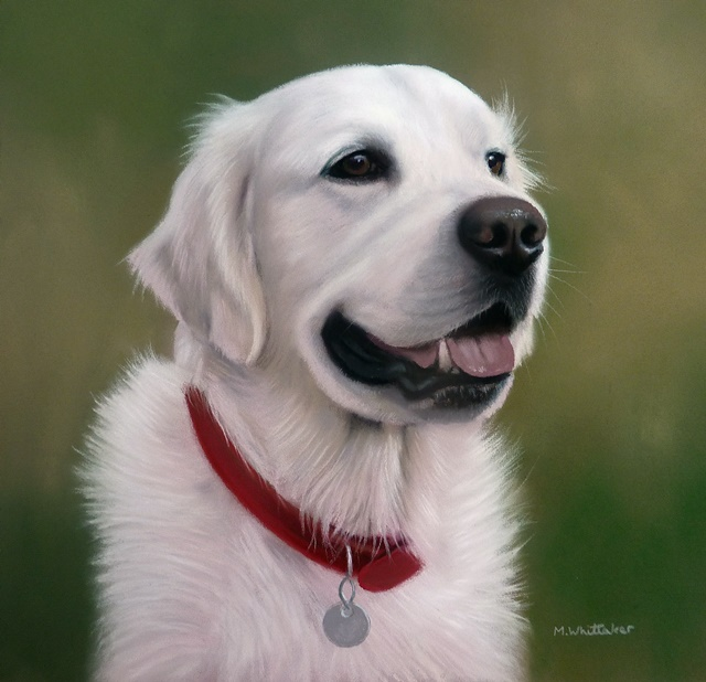 Original Pastel Painting Of Alfie