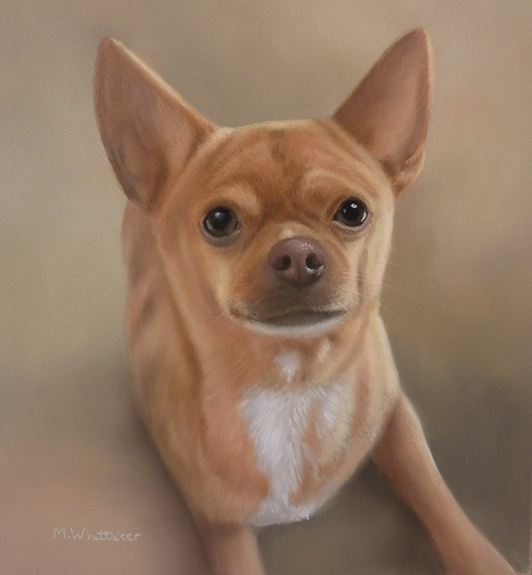 Original Pastel Painting Of Ruby The Chihuahua