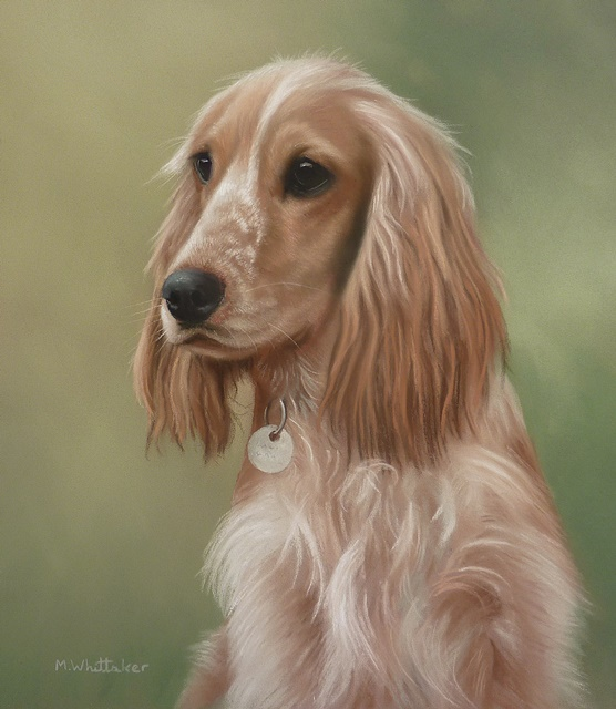 Original Pastel Painting of Cocker Spaniel, Lucy