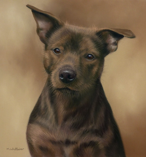 Original Pastel Painting Of Zara