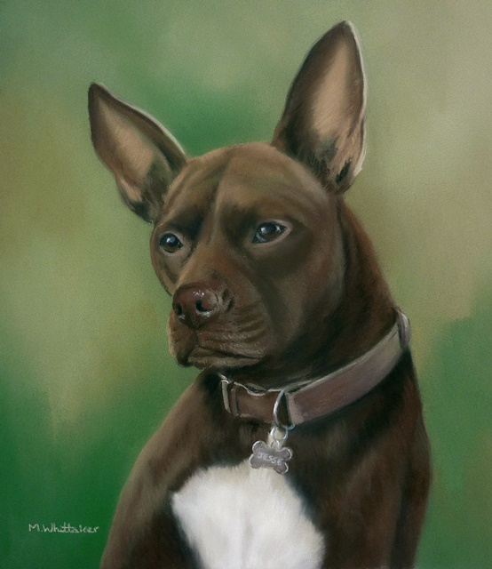 Original Pastel Painting Of Jesse.