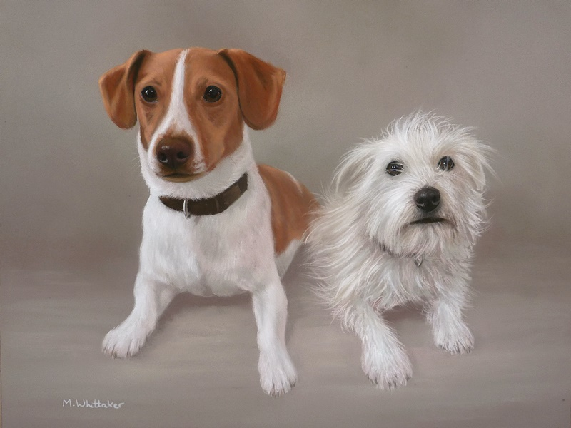 Original Pastel Painting Of Jack Russells.