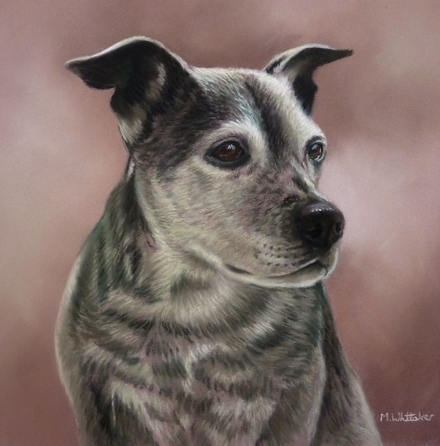 Original Pastel Painting Of Molly.
