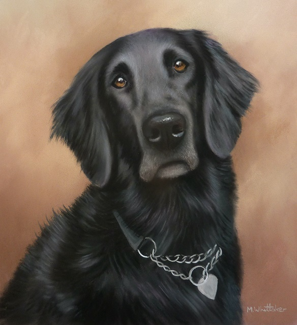 Original Pastel Painting Of Freya The Flat Coat Retriever