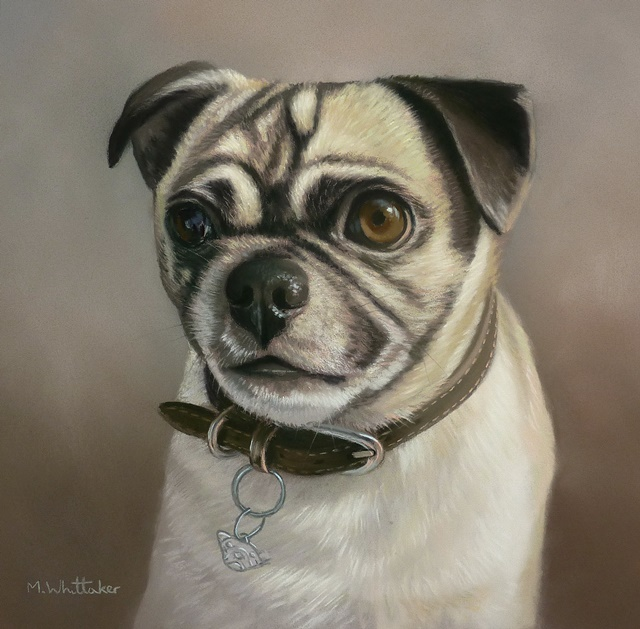 Original Pastel Painting Of Winston