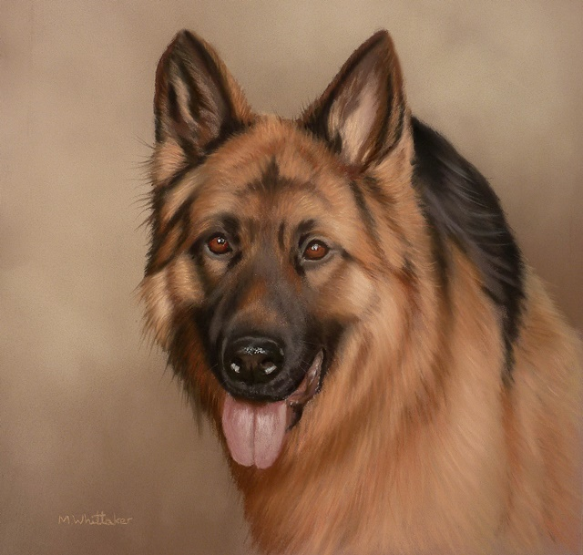 Original Pastel Painting Of Peyton The German Shepherd.