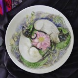 Hand Painted China. Cats on fine Bone China Bowl