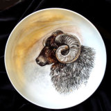 Hand Painted portrait onto China of Hebridean Sheep