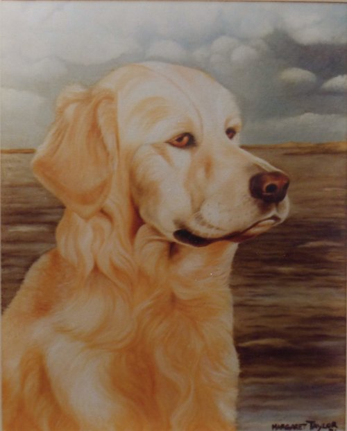 Oil Painting of Labrador