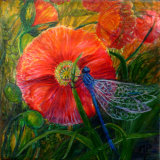 Poppy and Damselfly    New E-commerce site TheTaylorTrilogy.co.uk