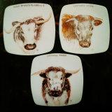 Past Commission 0f Longhorn Plates