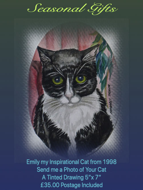 Tinted Portrait of your Cat. £35.00 Inc P&P Gallery 'Drawings and Paintings'