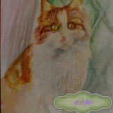 """Portrait of Nelly Musician in """"The Cat Band Story"""". Would you like a Watercolour Painting of your Cat?"""