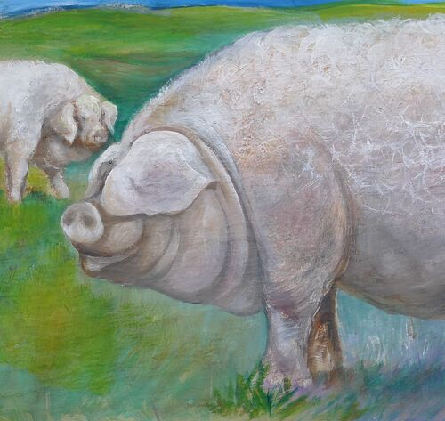 Lincolnshire Curley Coated Pig - Large Hand Painted Tile. Your Rare Breed Pig Painted or Drawn ?