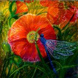 Poppy & Damselfly