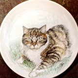 """Cat on a China Plate 8"""" Prices from £39.99."""