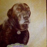 Oil Paintings of Dogs (Good Old Friend)