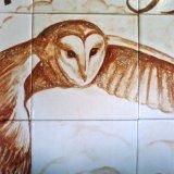 Close Detail of Owl in Landscape