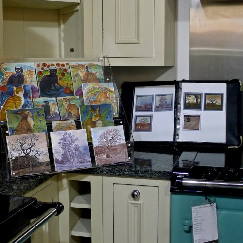 Limited Edition Tile launch at the AGA Shop Lincoln January 31st 2015. I had a lovely time in spite of the weather.