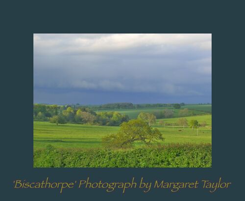 Biscathorpe in May by Margaret Taylor