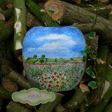 Poppy Landscape Vase £39.99 Payment on TheTaylorTrilogy.co.uk