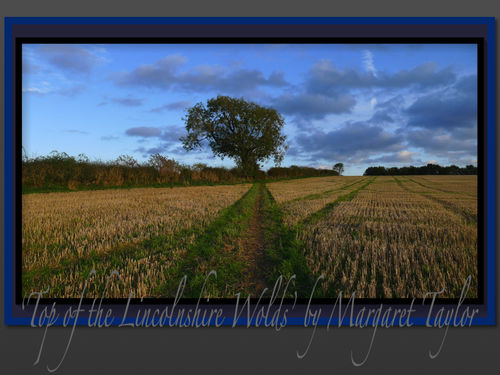 'Top of the Lincolnshire Wolds'
