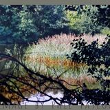 'Lake & Trees' Image by Phil Taylor