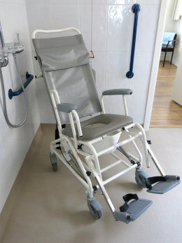Tilt-in-Space Shower Chair