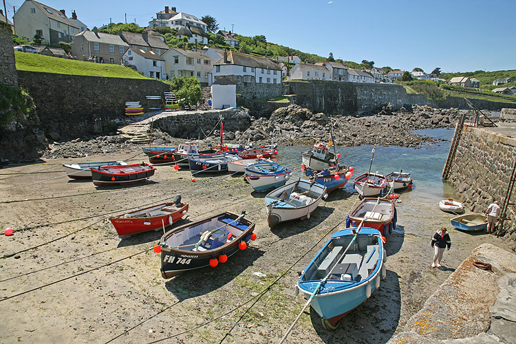 11311A Coverack