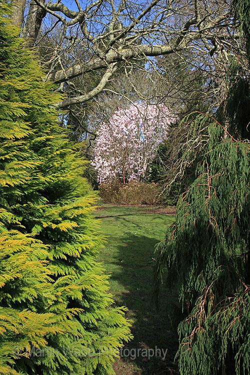 12253A Trelissick Gardens
