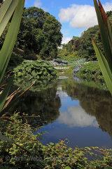 15405A Trebah Gardens