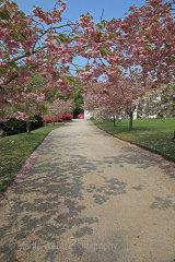 16245A Trevarno Gardens