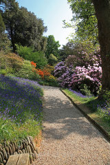 16358A Glendurgan Gardens