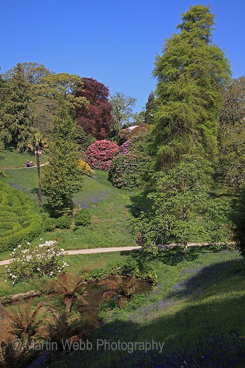 16375A Glendurgan Gardens