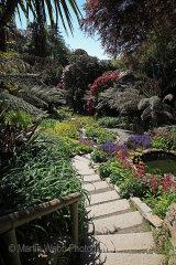 16422A Trebah Gardens