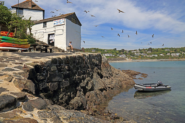 20465A Coverack