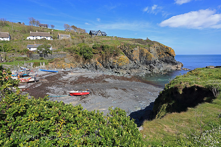 25591A Cadgwith