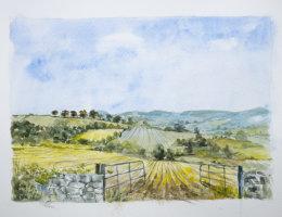 Carlow Landscape