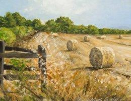 Fields of Hay