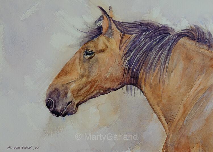 horse#4