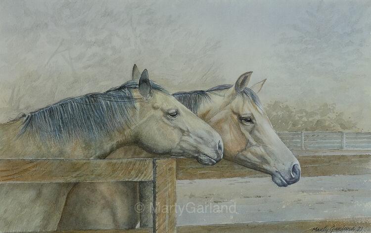 horse#5