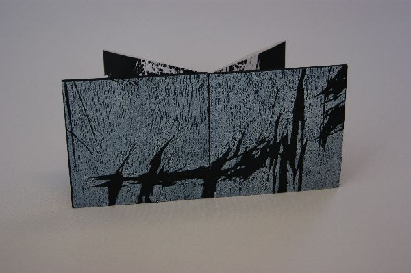 artist books 2013 004