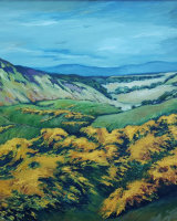 A view in the Ochil Hills
